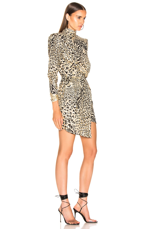 Image 2 of Dundas Gilded Leopard Print Dress in Leopard & Gold