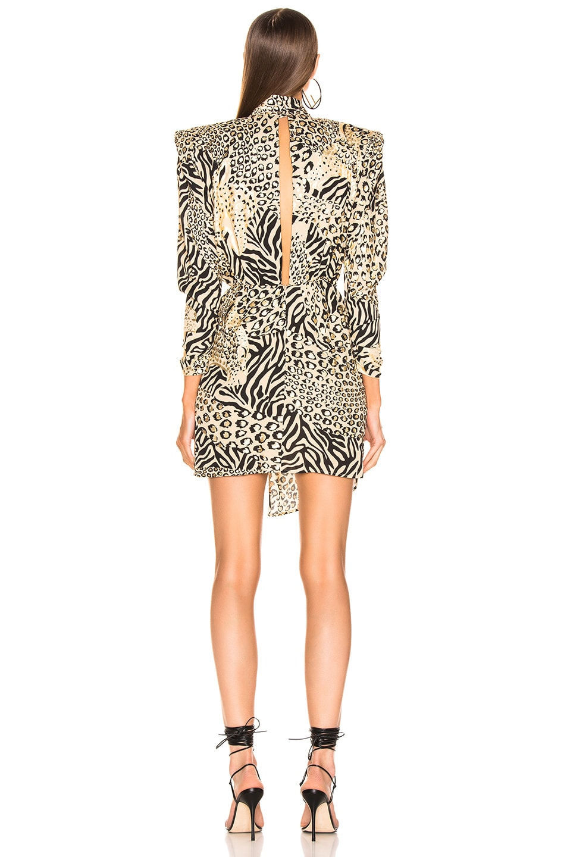 Image 4 of Dundas Gilded Leopard Print Dress in Leopard & Gold