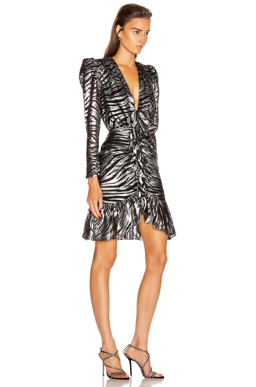 Image 2 of Dundas Long Sleeve Zebra Mini Dress in Black & Silver