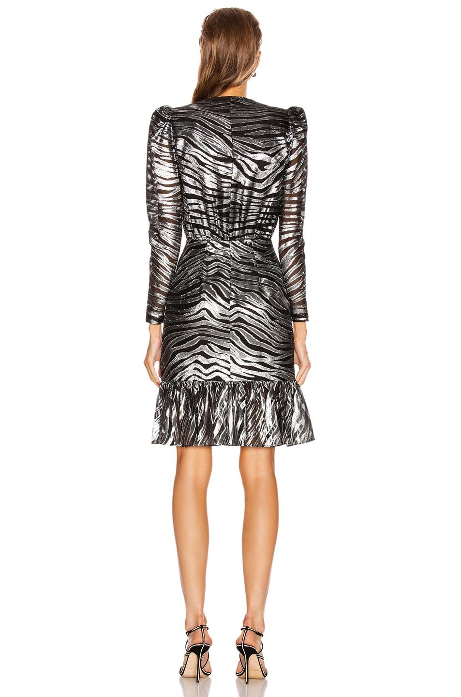 Image 3 of Dundas Long Sleeve Zebra Mini Dress in Black & Silver
