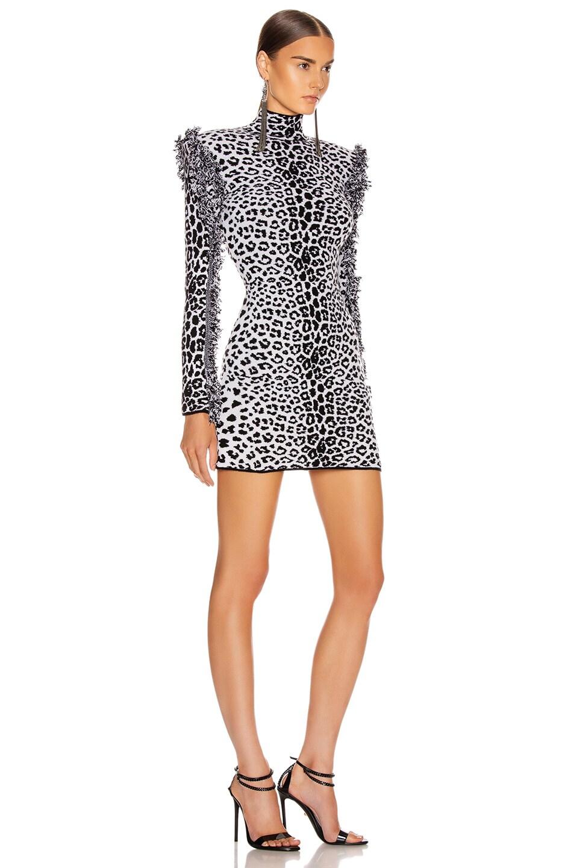 Image 2 of Dundas Long Sleeve Leopard Mini Dress in Black & Beige