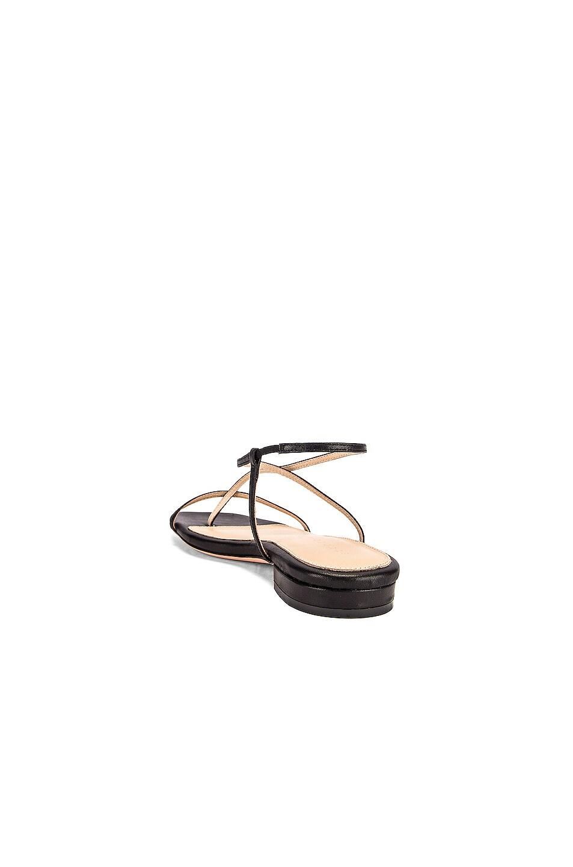 Image 3 of Studio Amelia 1.2 Sandal in Black