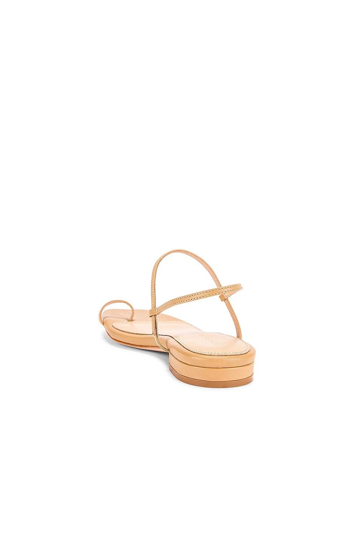 Image 3 of Studio Amelia 1.3 Sandal in Nude