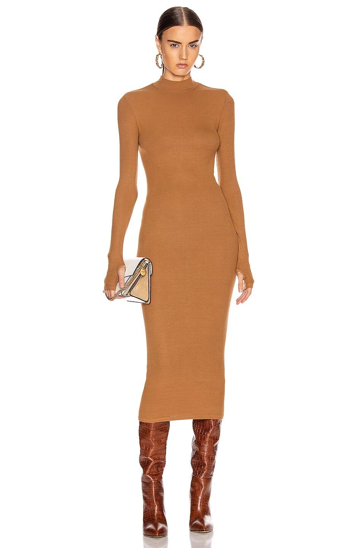 Image 1 of Enza Costa for FWRD Rib Mock Neck Midi Dress in Danish Brown