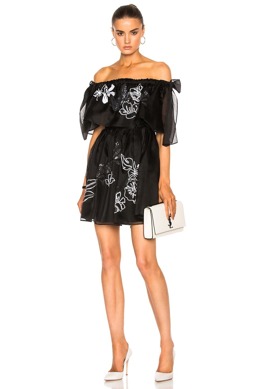 Fendi Embroidered Garden Organza Dress in Black,Floral
