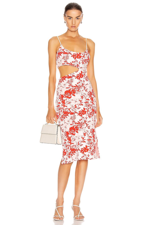 Image 1 of FLAGPOLE Bondi Dress in Paradise
