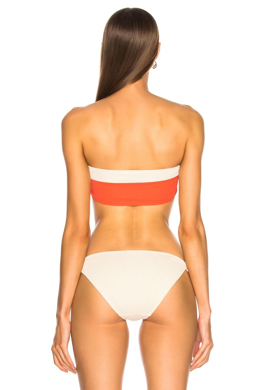 Image 3 of FLAGPOLE Lori Bikini Top in Papaya & Lychee