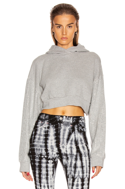 Image 1 of Frankie B Kylie Crystal Sleeves Cropped Hoodie in Heather Grey