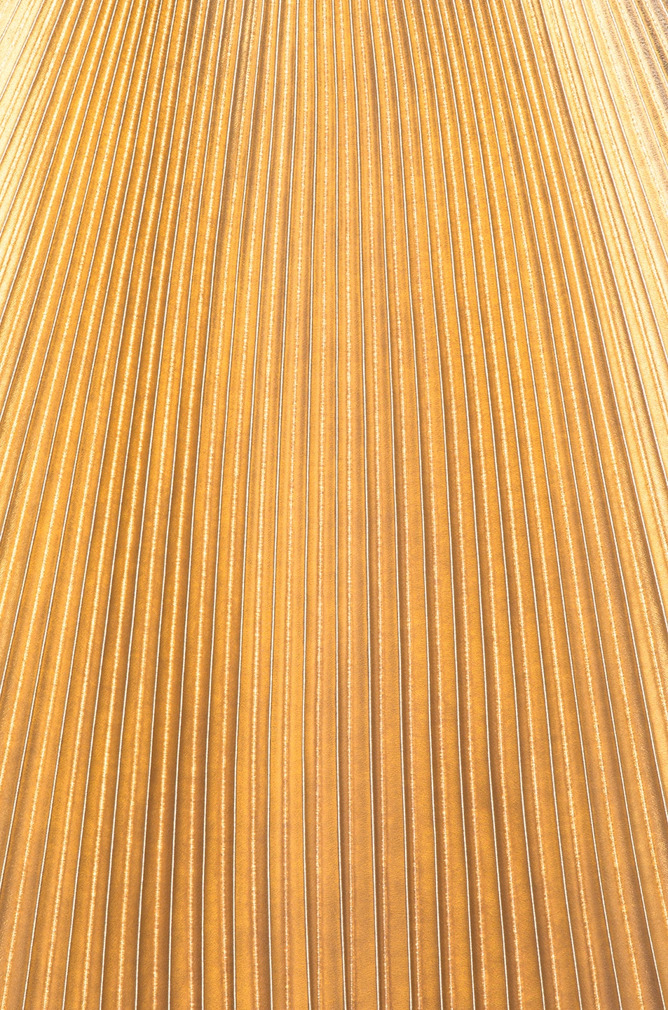 Image 6 of Frankie Pleated Skirt in Light Gold