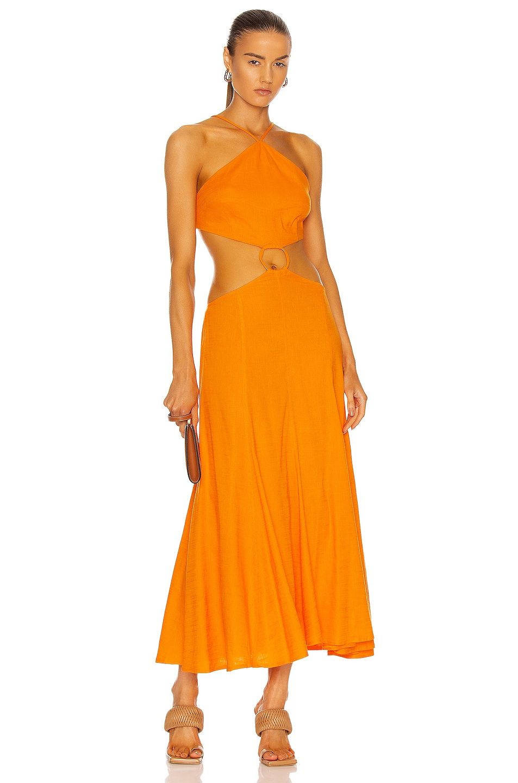 Image 1 of Cult Gaia Nadeesha Dress in Sunburst