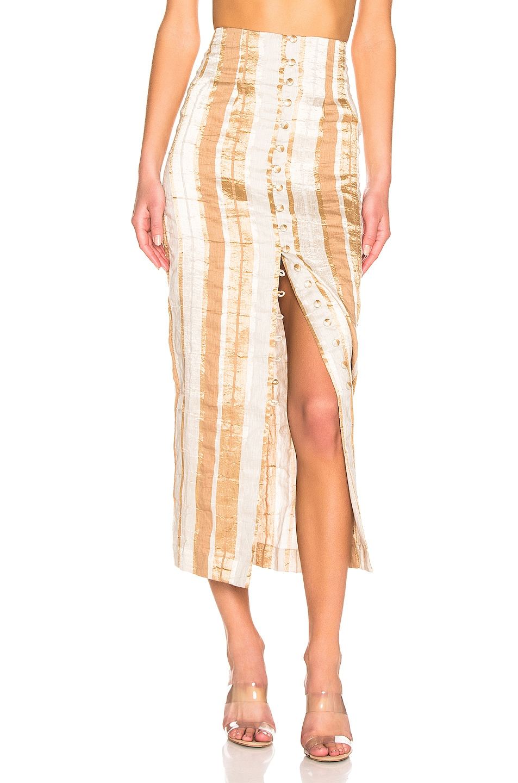 Image 1 of Cult Gaia Hera Skirt in Natural Stripe