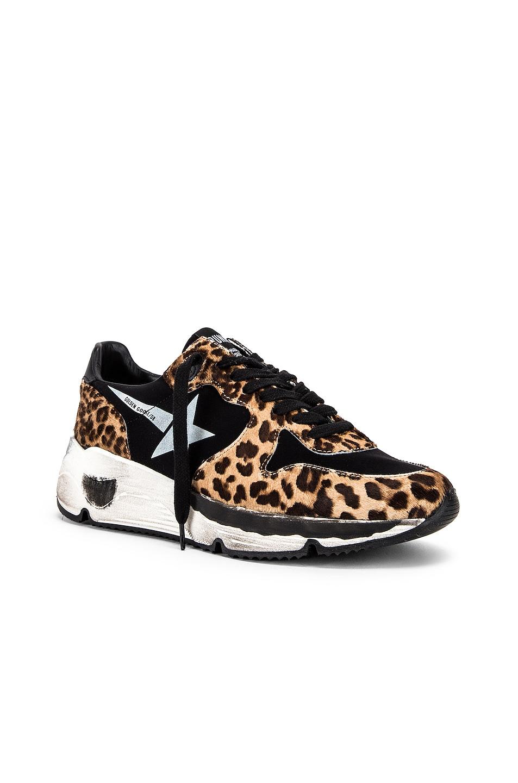 Image 2 of Golden Goose Running Sole Sneaker in Leopard & White Star