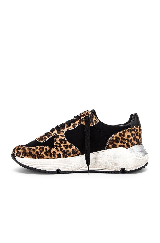 Image 5 of Golden Goose Running Sole Sneaker in Leopard & White Star