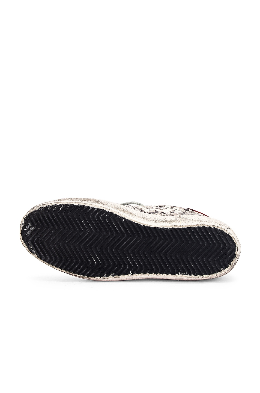 Image 6 of Golden Goose Superstar Sneaker in Natural Snake Print & Ice Star