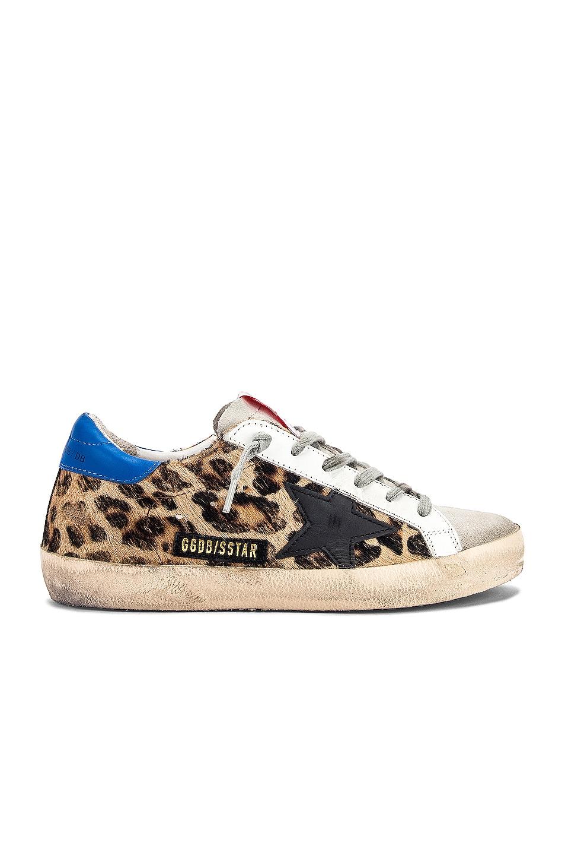 Image 1 of Golden Goose Superstar Sneaker in Snow Leopard & Royal