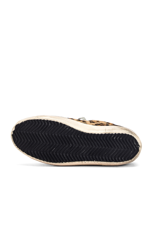 Image 6 of Golden Goose Superstar Sneaker in Snow Leopard & Royal