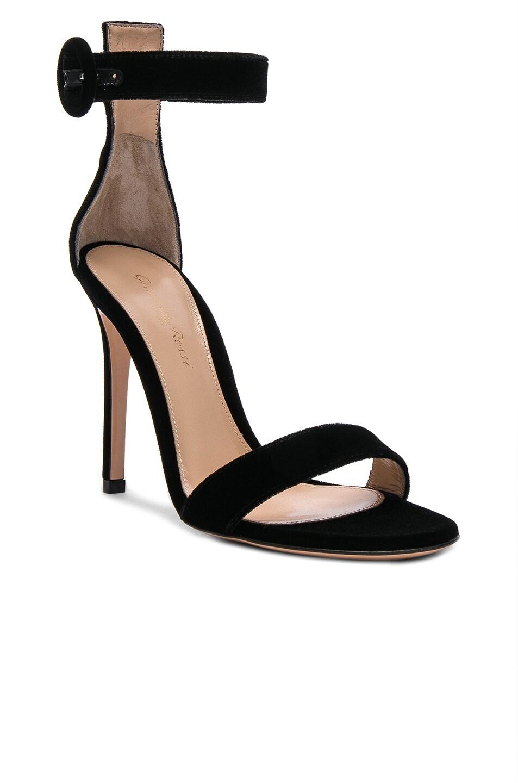Image 2 of Gianvito Rossi Velvet Portofino Heels in Black