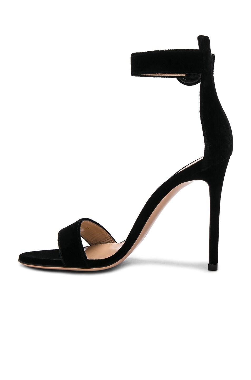 Image 5 of Gianvito Rossi Velvet Portofino Heels in Black