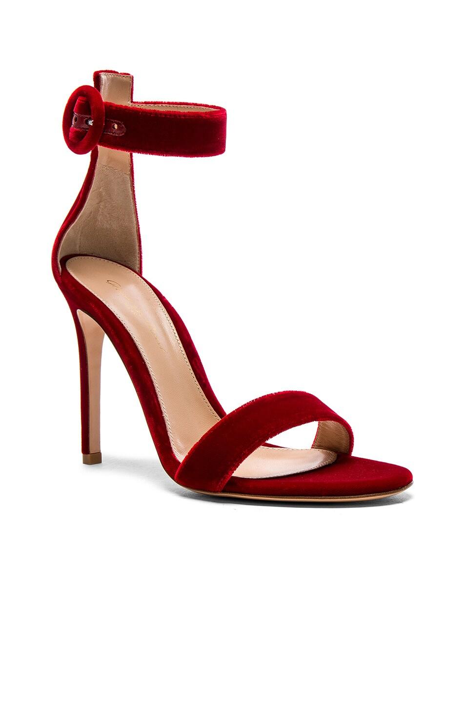 Image 2 of Gianvito Rossi Velvet Portofino Heels in Tabasco Red