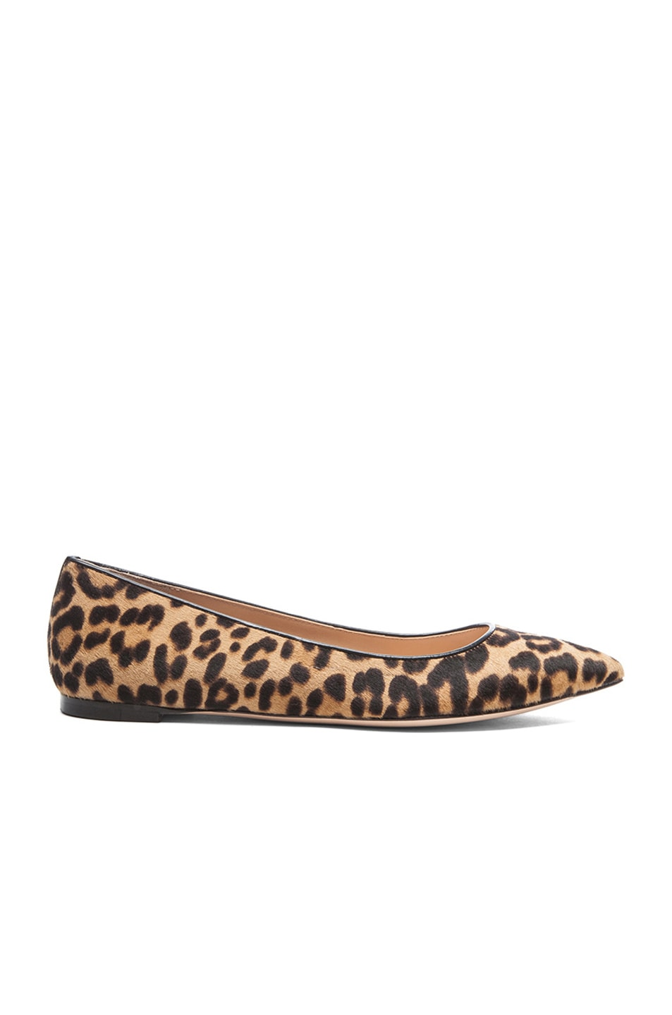 Image 1 of Gianvito Rossi Calf Hair Flats in Leopard & Black