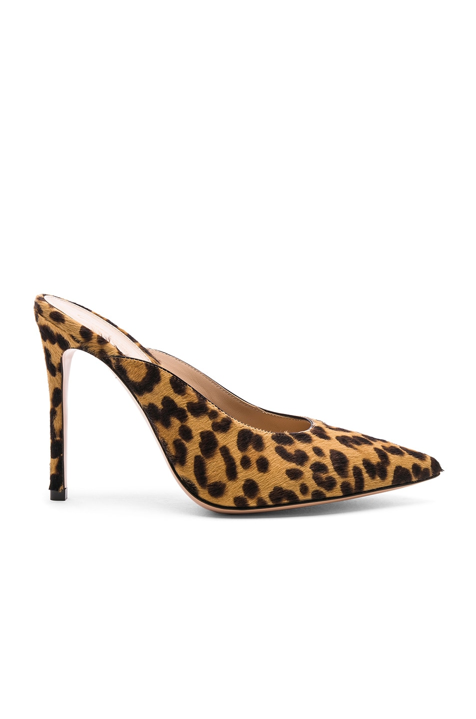 Image 1 of Gianvito Rossi Calf Hair Lyle Mules in Leopard & Black