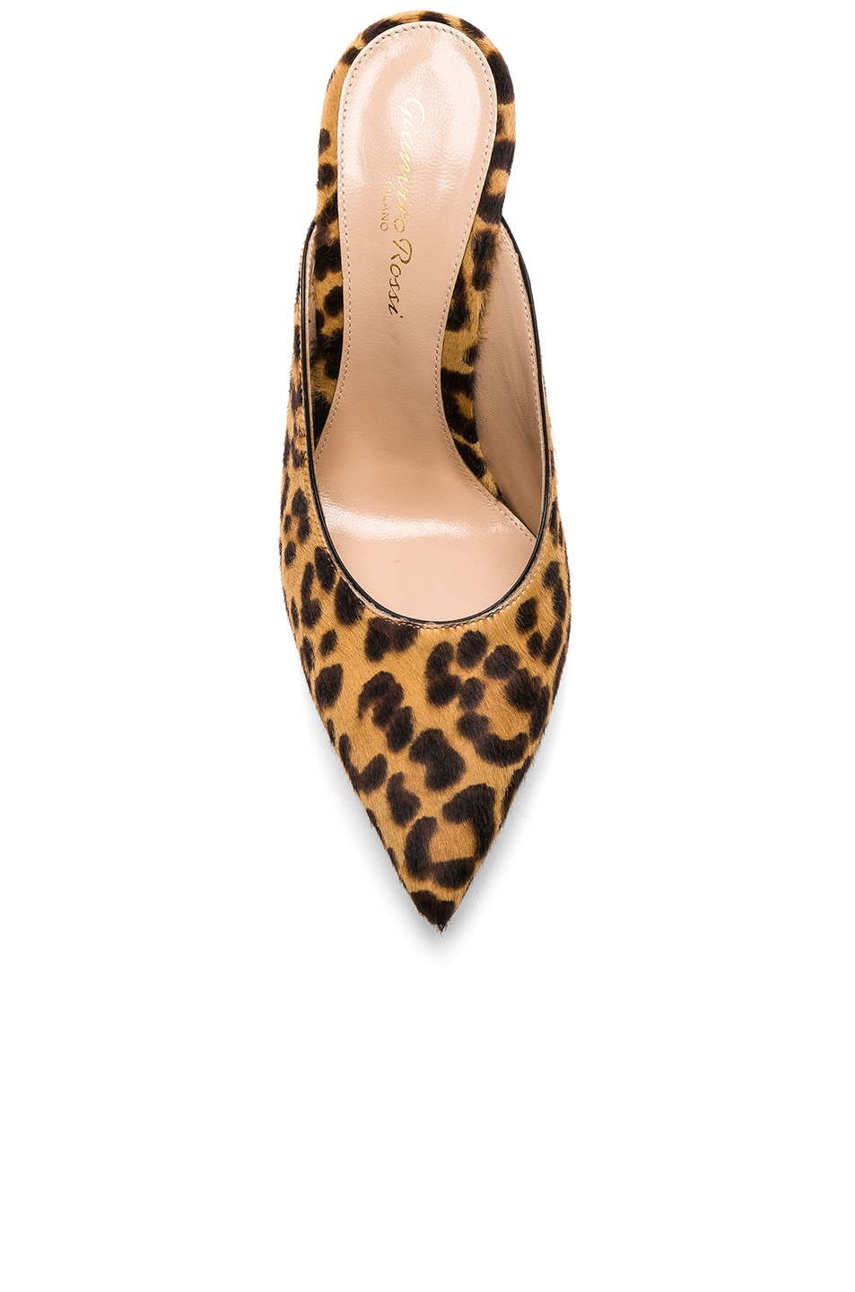 Image 4 of Gianvito Rossi Calf Hair Lyle Mules in Leopard & Black