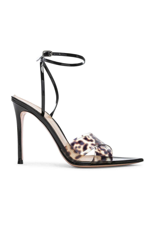 Image 1 of Gianvito Rossi Stark Leopard Heel in Leopard & Black