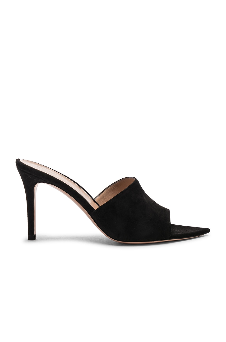 Image 1 of Gianvito Rossi Camoscio Mules in Black
