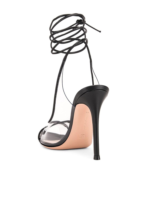 Image 3 of Gianvito Rossi Denise Heels in Black & Transparent