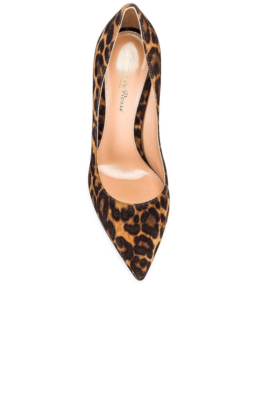 Image 4 of Gianvito Rossi Camoscio Gianvito Leopard Heels in Almond Leopard Print