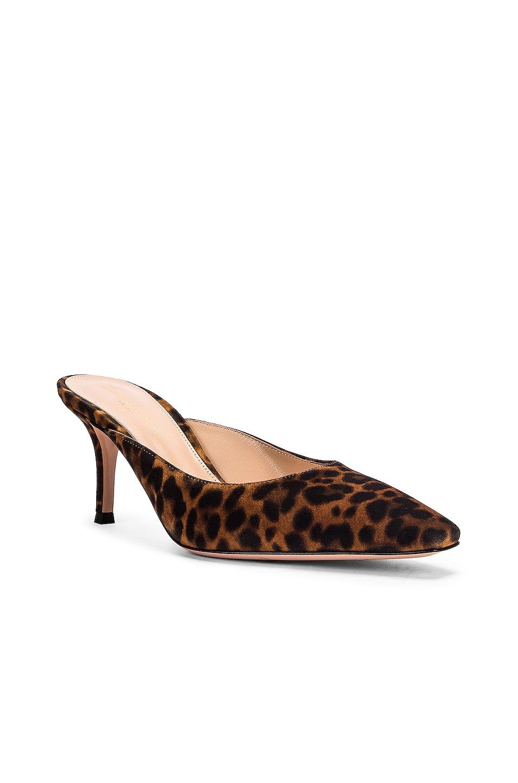 Image 2 of Gianvito Rossi Kitten Heels in Almond Leopard Print