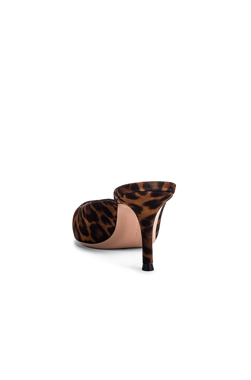 Image 3 of Gianvito Rossi Kitten Heels in Almond Leopard Print