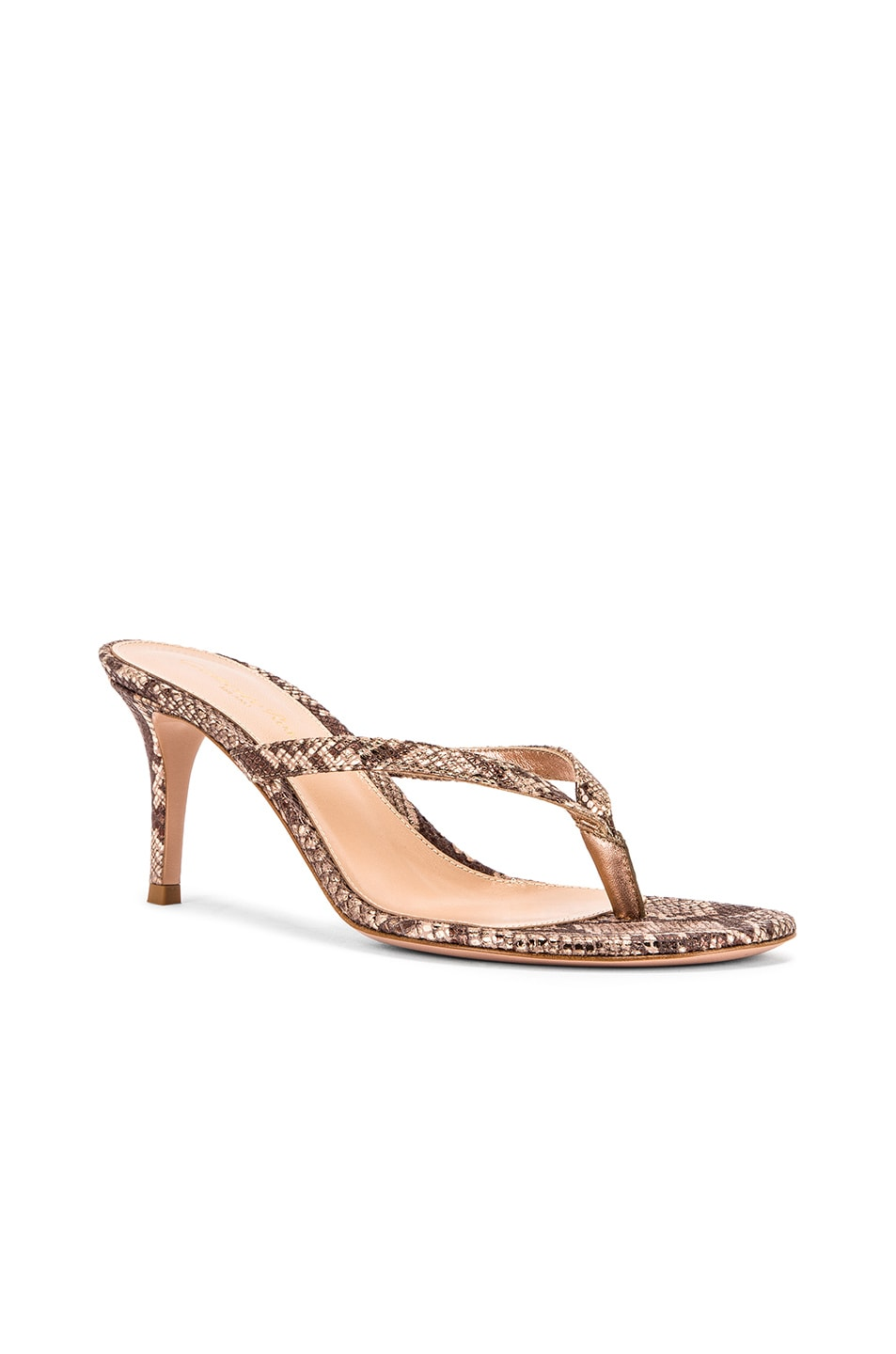 Image 2 of Gianvito Rossi Dallas Thong Sandals in Praline