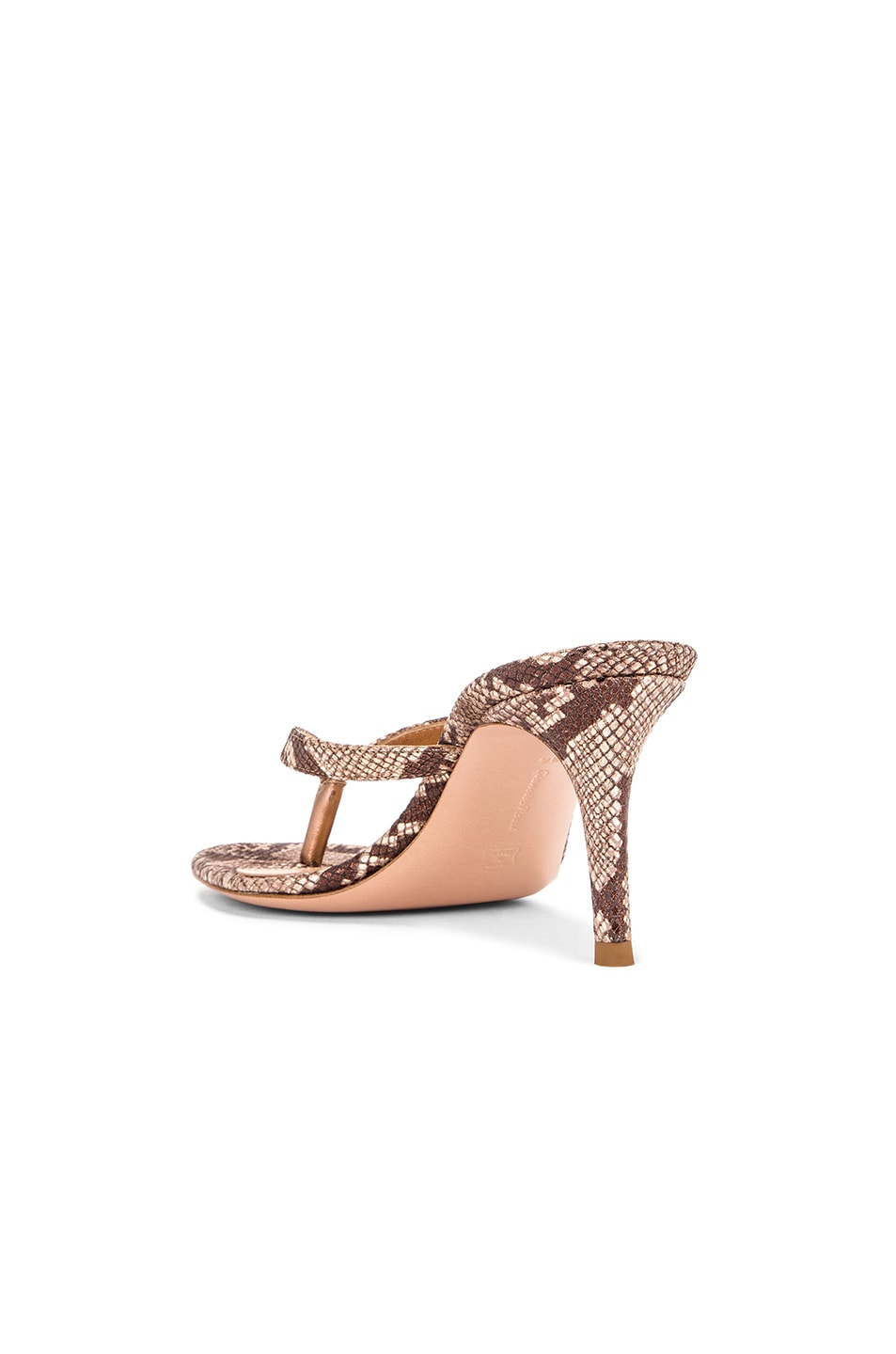 Image 3 of Gianvito Rossi Dallas Thong Sandals in Praline