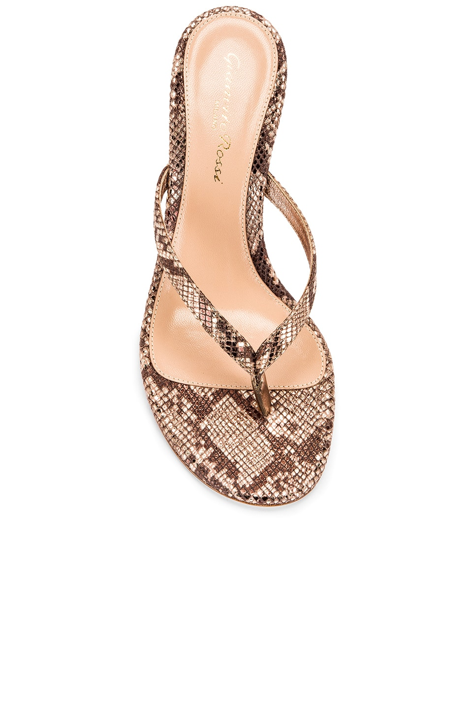 Image 4 of Gianvito Rossi Dallas Thong Sandals in Praline
