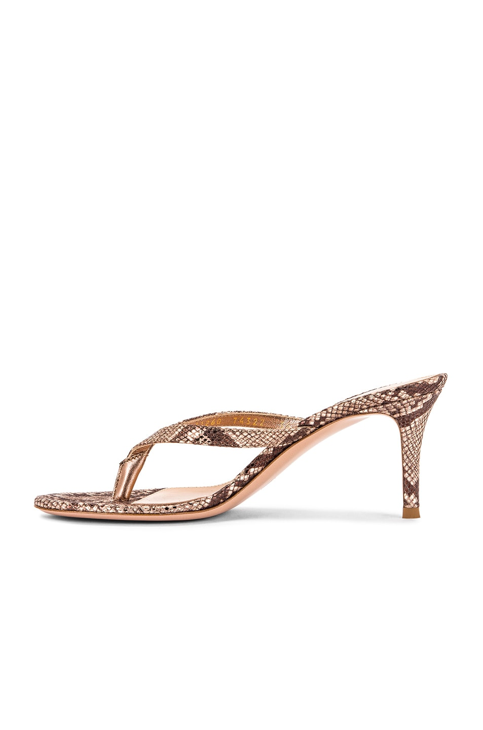Image 5 of Gianvito Rossi Dallas Thong Sandals in Praline