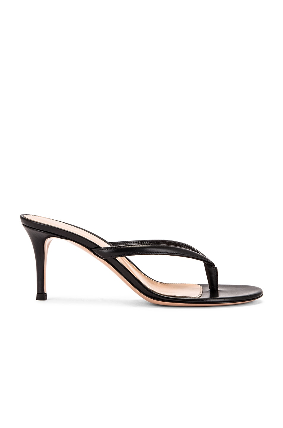 Image 1 of Gianvito Rossi Thong Sandals in Black