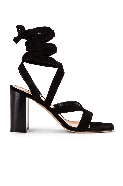 Image 1 of Gianvito Rossi Camoscio Strappy Sandals in Black
