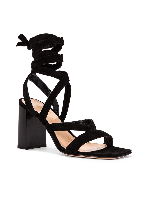 Image 2 of Gianvito Rossi Camoscio Strappy Sandals in Black