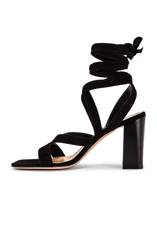 Image 5 of Gianvito Rossi Camoscio Strappy Sandals in Black