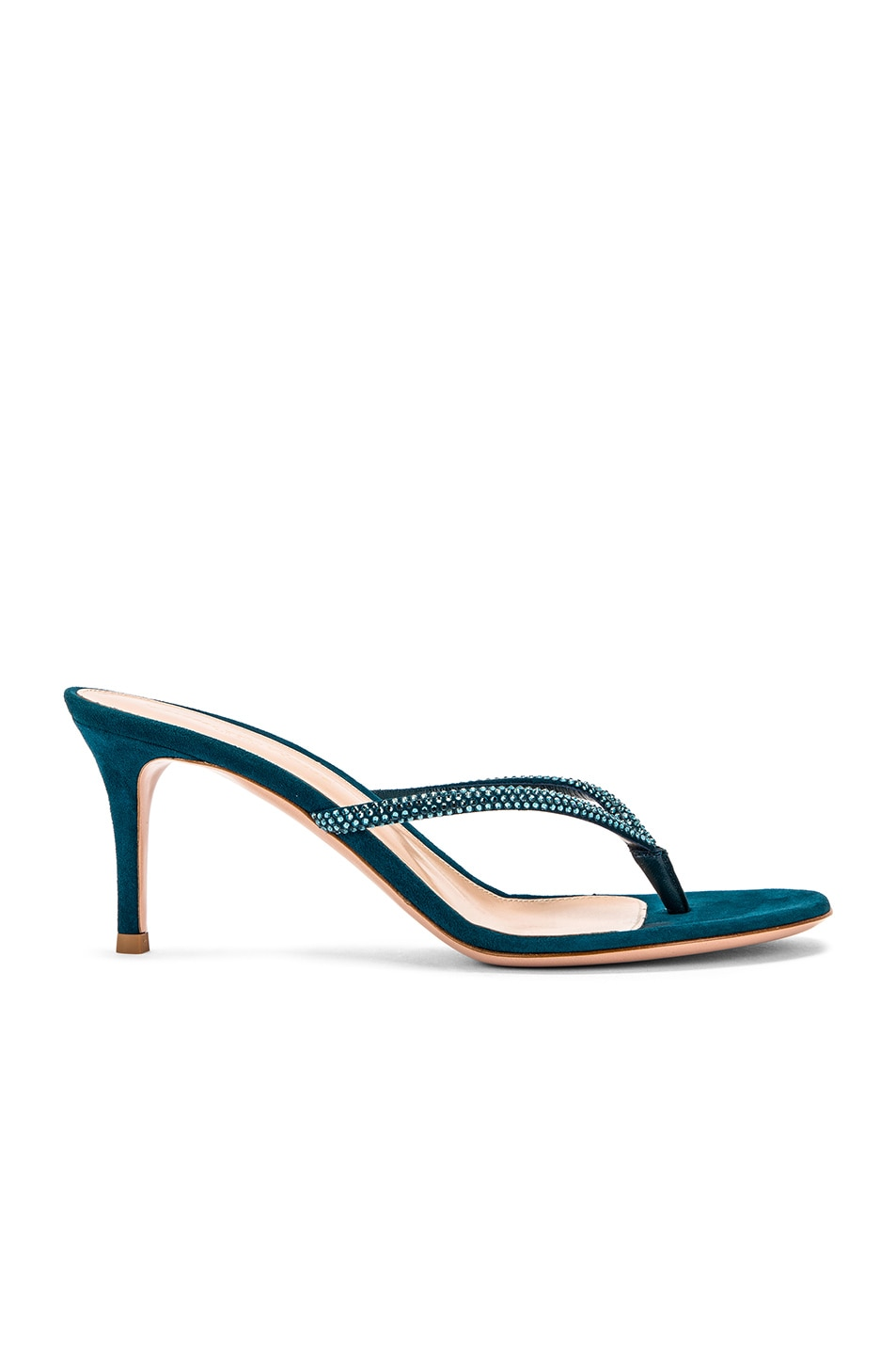 Image 1 of Gianvito Rossi Suede Thong Sandals in Persian