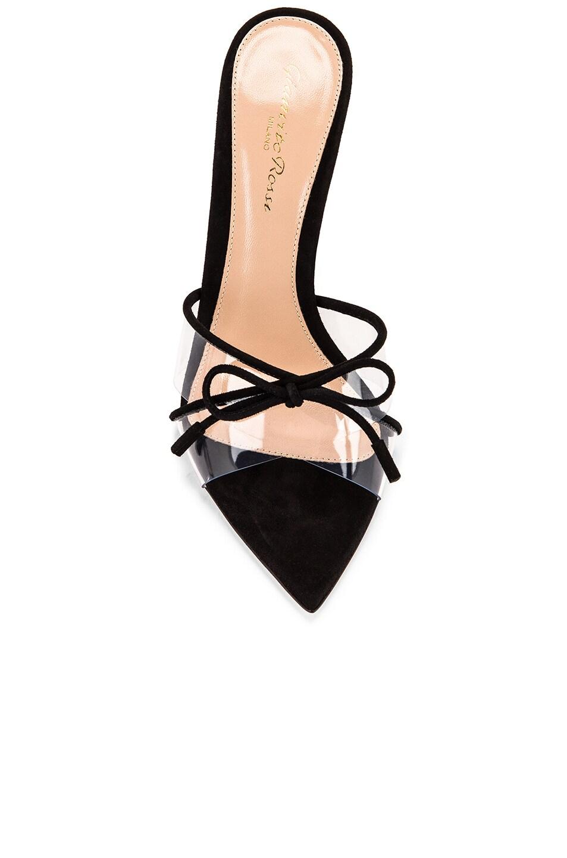 Image 4 of Gianvito Rossi Camoscio & Plexi Tie Mules in Black & Transparent