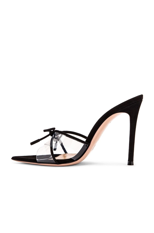 Image 5 of Gianvito Rossi Camoscio & Plexi Tie Mules in Black & Transparent