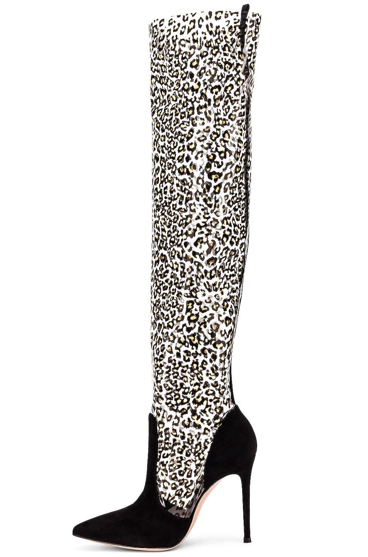 Image 5 of Gianvito Rossi Camoscio & Plexi Knee High Boots in Black & Leopard