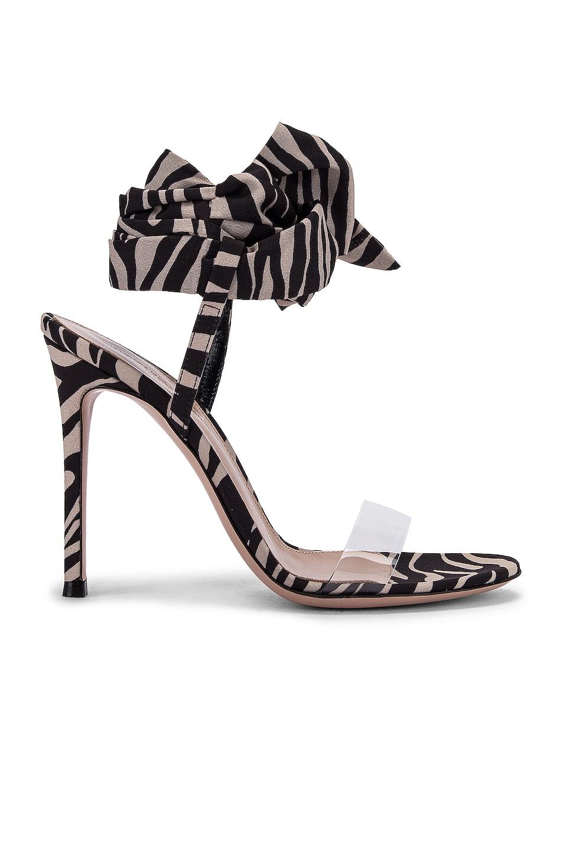 Image 1 of Gianvito Rossi Scarf Tie Heels in Transparent & Zebra