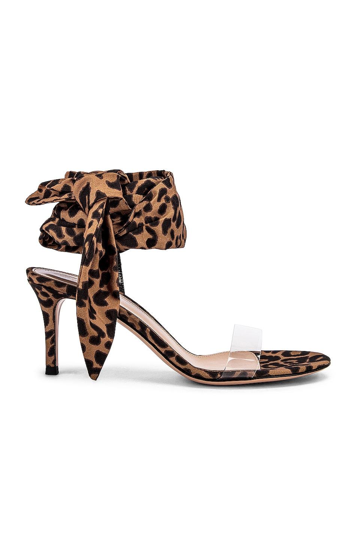 Image 1 of Gianvito Rossi Scarf Tie Sandals in Transparent & Leopard