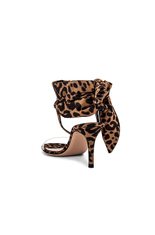 Image 3 of Gianvito Rossi Scarf Tie Sandals in Transparent & Leopard