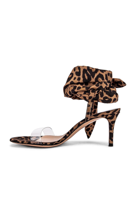Image 5 of Gianvito Rossi Scarf Tie Sandals in Transparent & Leopard