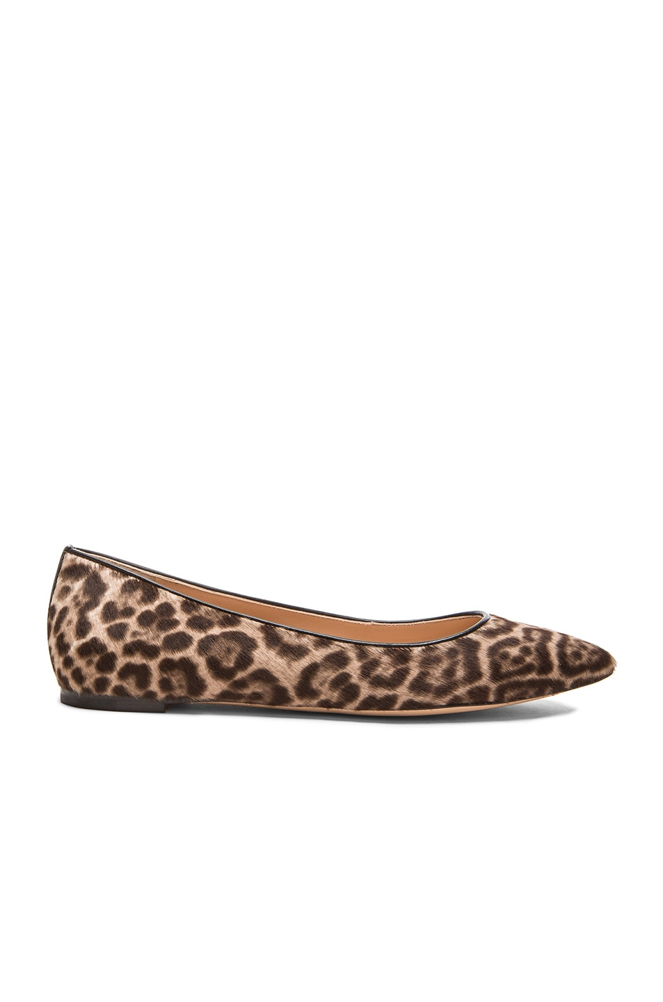 Image 1 of Gianvito Rossi Pointed Flats in Lynx Pony Hair