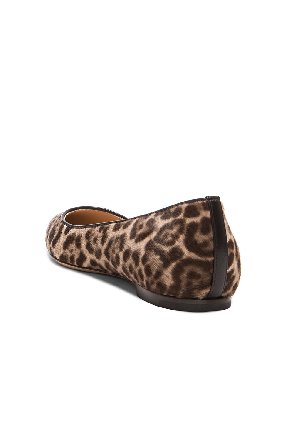 Image 3 of Gianvito Rossi Pointed Flats in Lynx Pony Hair